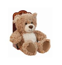 Aroma Home Cozy Bear Hot Water Bottle